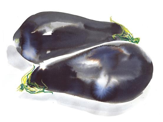 aubergine2