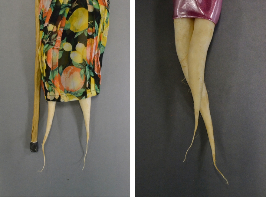 veg legs